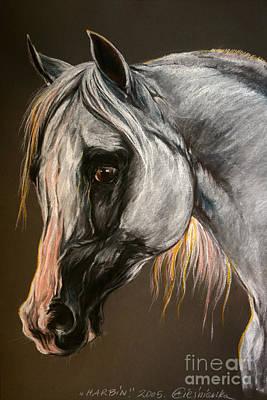 The Grey Arabian Horse Print by Angel  Tarantella
