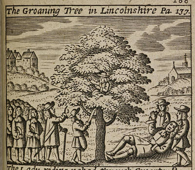 Rhythm And Blues Photograph - The Groaning Tree In Lincolnshire by British Library