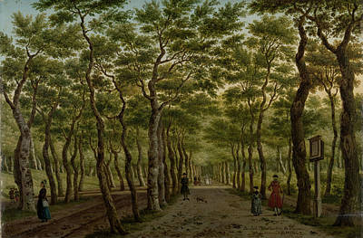 Bo Drawing - The Herepad In The Haagse Bos, The Netherlands by Litz Collection