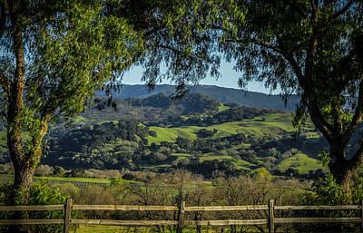California Vineyard Photograph - The Hills by Ernie Echols