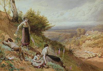 The Hillside Gatherine Foxgloves Print by Myles Birket Foster