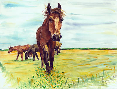 Horse Watercolor Painting - The Horse by Shara  Wright