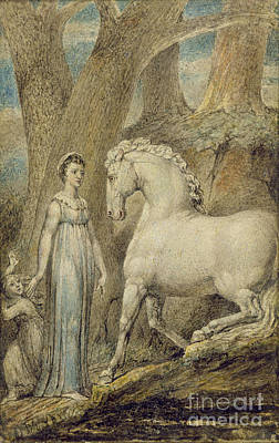 Blake Drawing - The Horse by William Blake