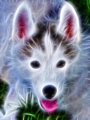 Pup Digital Art - The Huskie Pup by Bill Cannon