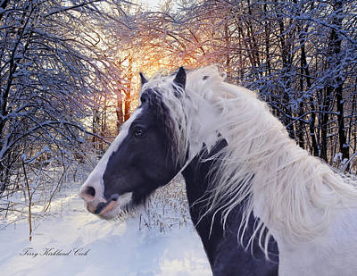 Gypsy Digital Art - The Ice Blue Winter by Terry Kirkland Cook