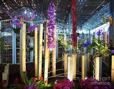 The International Orchid Show In Taiwan Print by Yali Shi