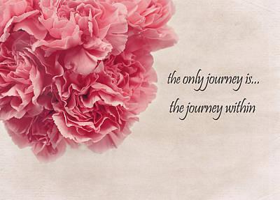 Pink Carnation Photograph - The Journey by Kim Hojnacki