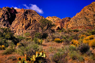 Old West Photograph - The Landscape Of Red Rock Canyon Nevada by David Patterson
