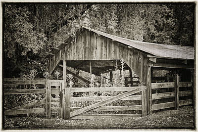 Pinot Photograph - The Last Barn by Joan Carroll