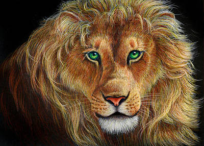 Colored Pencil Painting - The Lion by Heidi Carson