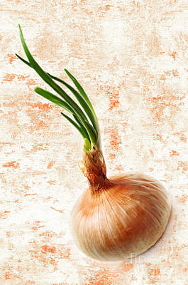 Onion Digital Art - The Lonely Onion by Andee Design