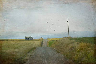 Paradise Road Photograph - The Long Road Home by Juli Scalzi