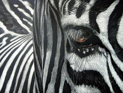 Scratchboard Painting - The Look by Lesley Barrett