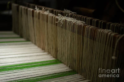 Warp-weft Photograph - The Loom by Brothers Beerens