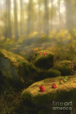 Atmospheric Digital Art - The Magic Forest by Veikko Suikkanen