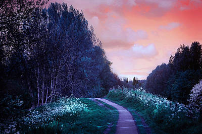 The Magical Path Print by Jenny Rainbow