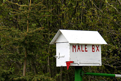Mail Box Photograph - The Male Box by Art Block Collections