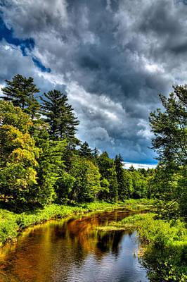 Branches Photograph - The Meandering Moose River by David Patterson