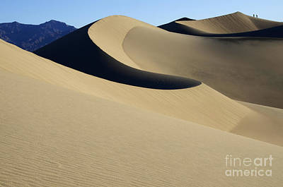 The Mesquite Dunes Of California Print by Bob Christopher