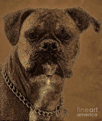 Boxer Digital Art - The Modern Boxer Bulldog by Lesa Fine