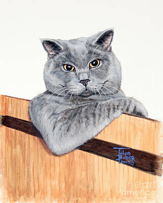 Feline Painting - The Next Door Neighbor by Art By - Ti   Tolpo Bader