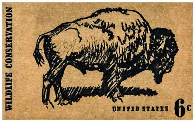 The North American Bison Stamp Print by Lanjee Chee