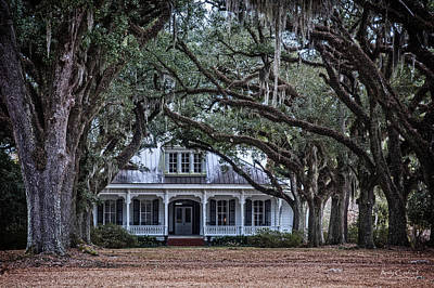 Andy Crawford Photograph - The Oaks Plantation by Andy Crawford