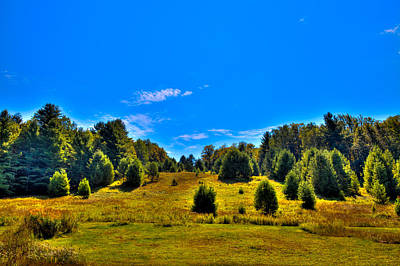 Autumn Landscape Photograph - The Old Maple Ridge Ski Area - Old Forge Ny by David Patterson