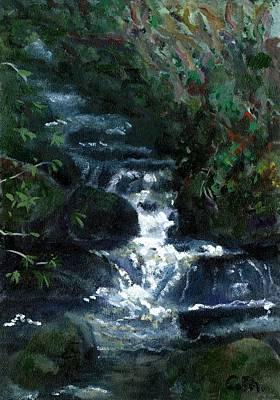 The Owenwee River At Brackloon Westport Mayo On The Wild Atlantic Way Of Western Ireland Original by Catherine Considine