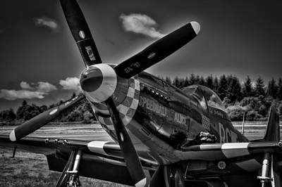 Wing Photograph - The P-51 Speedball Alice Mustang by David Patterson