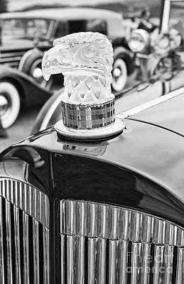 Antique Automobiles Photograph - The Packard Eagle Hood Ornament At The Concours D Elegance. by Jamie Pham