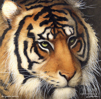 Bengal Tiger Painting - The Painted Warrior... by Will Bullas