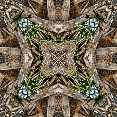 Manipulation Photograph - The Palm Project 18 Square by Wendy J St Christopher