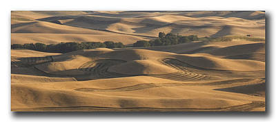 Harvest Hills Print by Latah Trail Foundation