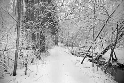Snowscape Photograph - The Path Not Taken by Betsy C Knapp