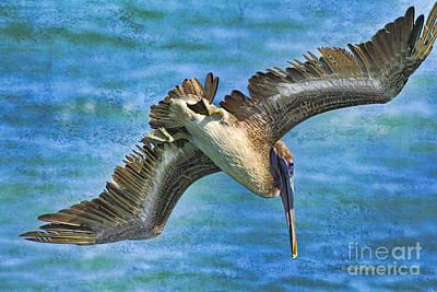 Waterfowl Mixed Media - The Peli Dive by Deborah Benoit