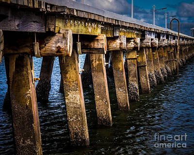 The Pier Print by Perry Webster