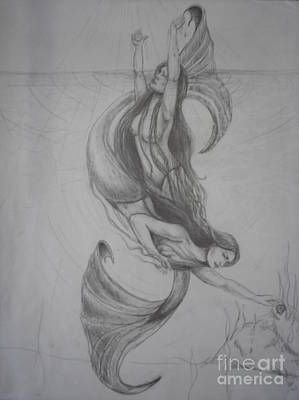 Pisces Fish Drawing - The Pisces by Sara Antonino