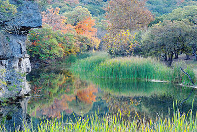 Possum Photograph - The Pond At Lost Maples State Natural Area - Texas Hill Country by Silvio Ligutti