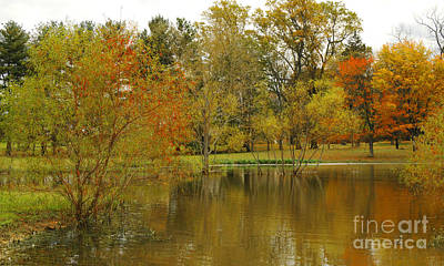 Solebury Photograph - The Pond At Pidcock Creek Road by Addie Hocynec
