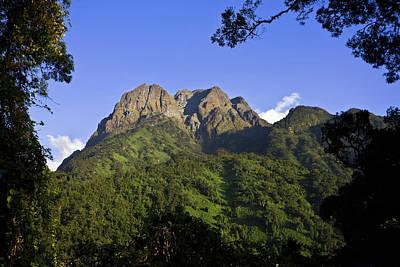 Congo Photograph - The Portal Peaks In The Rwenzori, Uganda by Martin Zwick