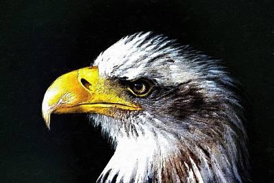 The Proud Eagle Print by Florian Rodarte