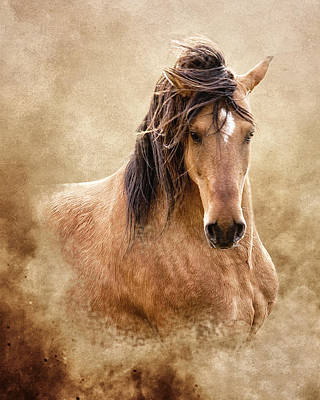 Buckskin Photograph - The Proud by Ron  McGinnis