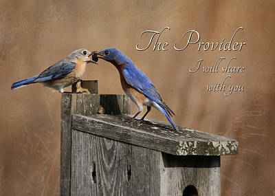 The Provider Print by Lori Deiter