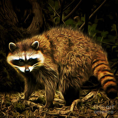 Raccoon Digital Art - The Raccoon 20150215brun Square by Wingsdomain Art and Photography