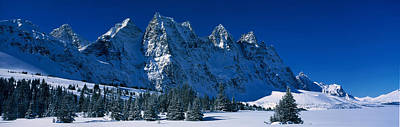 Winter Trees Photograph - The Ramparts Tonquin Valley Jasper by Panoramic Images