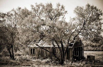 Del Rio Tx Print featuring the photograph The Ranch  by Amber Kresge