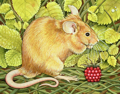 The Raspberry Mouse Print by Ditz