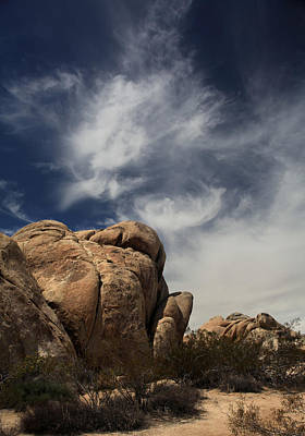Joshua Tree Photograph - The Reclining Woman by Laurie Search