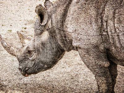Rhinocerus Photograph - The Rhino by Ray Van Gundy